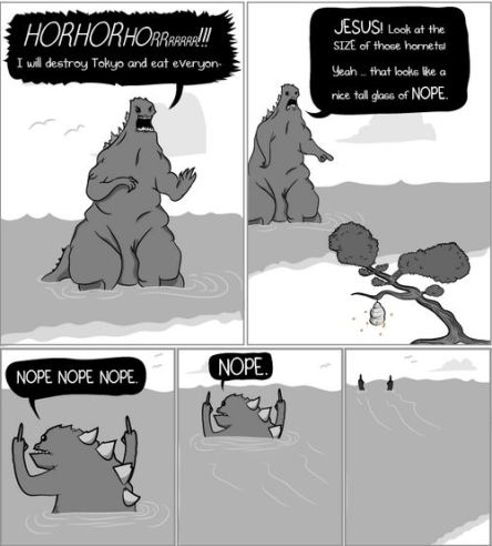 taken from theoatmeal.com I saw this comic a few months back, replace hornets with snowflakes and you have my sentiments.