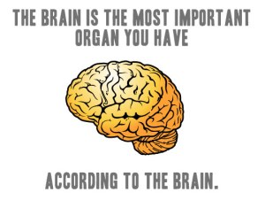 brain is the most